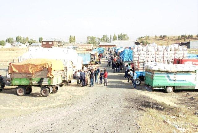 """Ağrı'da """"Saman"""" Sudan Ucuza Satılıyor"""