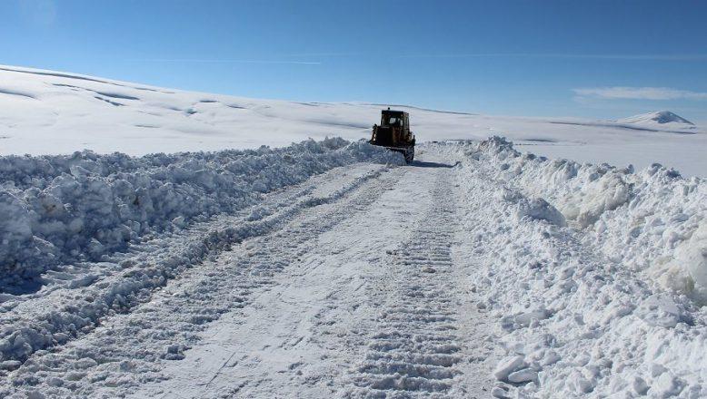 Ağrı'da kar yağışı köylerle irtibatı kesti