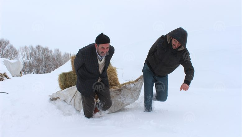 Ağrı'da besicilerin zorlu kış mesaisi