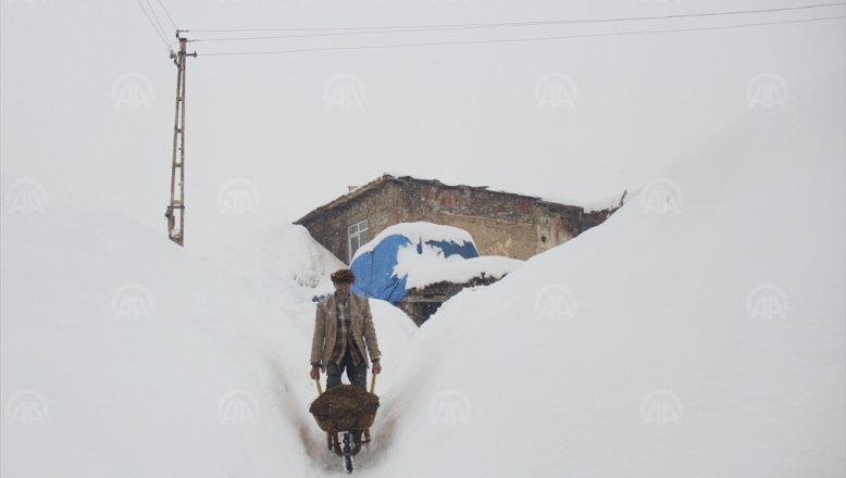 Ağrı'da kar yağışı yaşamı olumsuz etkiliyor