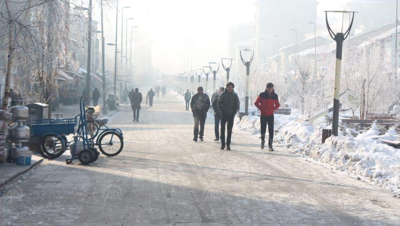 Ağrı'da Sibirya Soğukları Donduruyor
