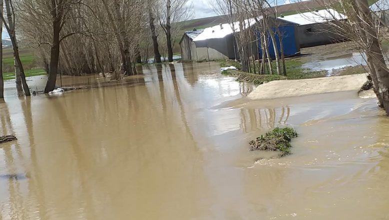 Ağrı'ın Hamur İlçesinde Sel Baskını