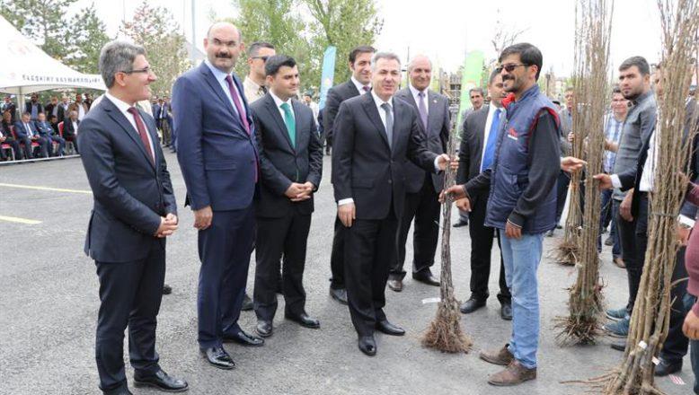 Ağrı- Eleşkirt'te Törenle 7500  Adet Fidan Dağıtımı Yapıldı