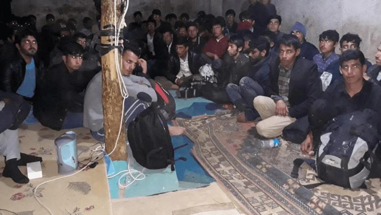 Ağrı'da Göçmen Kaçakçılığı Operasyonunda 769 Düzensiz Göçmen Yakalandı