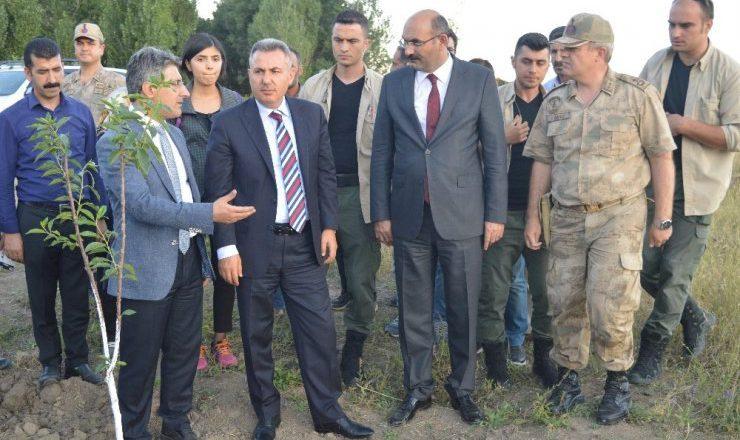 """Vali Elban  """"Meyve veren yeşil bir Ağrı olsun istiyoruz"""""""