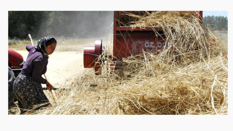 Çiftçiye ve hayvancılığa 2019 yılında ne kadar destek verilecek?