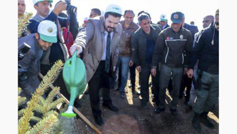 Başkan Sayan:Hedefimiz Yeşil Bir Ağrı Ve Türkiye