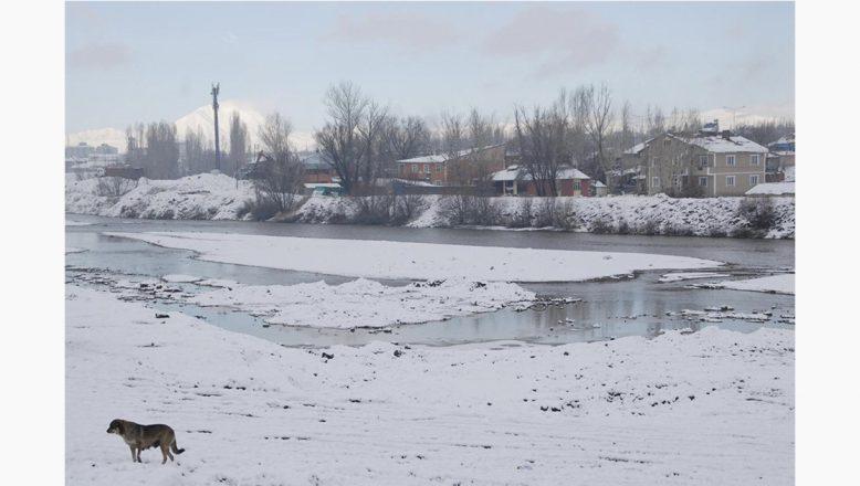 Ağrı ve çevre illerde kuvvetli buzlanma don uyarısı