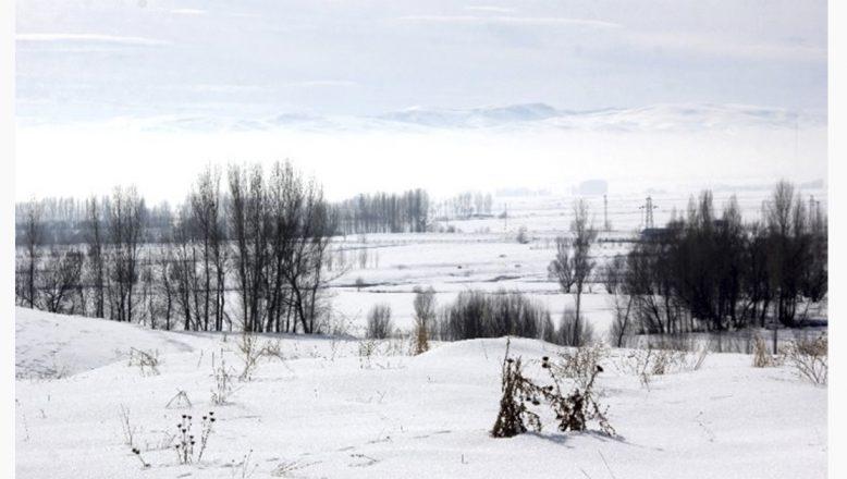 Ağrı'da dondurucu soğuklar hayatı olumsuz etkiliyor