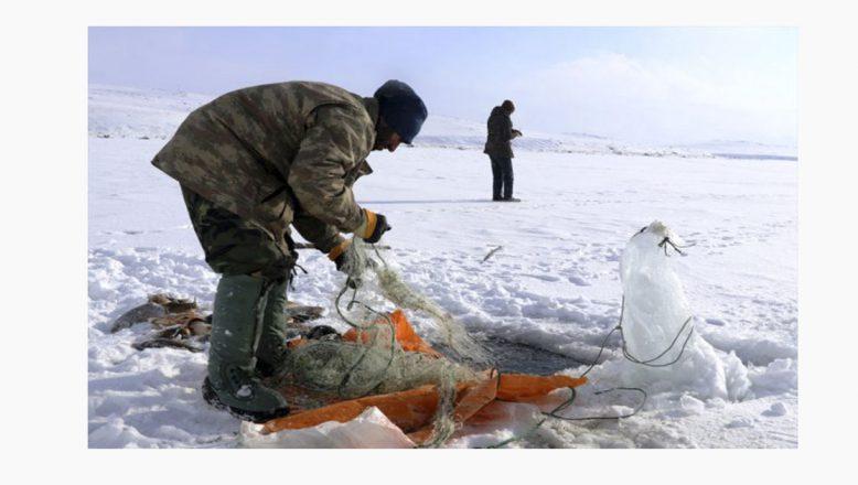 Ağrı'da buz tutan göl'de balıkçıların zorlu savaşı