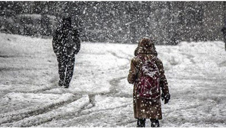 Ağrı'nın Hamur ilçesi ve köylerinde okullara kar tatili