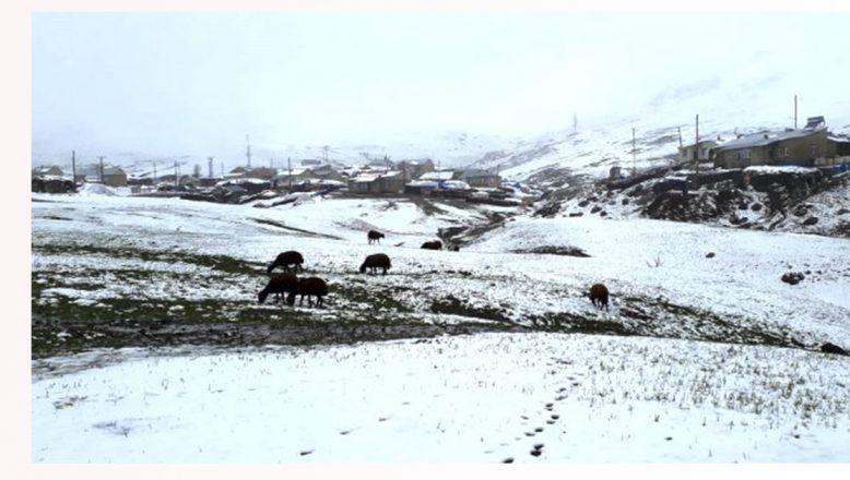 Ağrı'da yüksek rakımlı köylerde kar etkili oldu