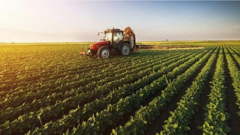 Bakan Pakdemirli: Yazlık ekim yapılabilecek 21 ilde tohumun yüzde 75'i hibe olarak verilecek