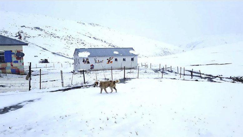 Ağrı'da nisan karı köylerde yaşamı olumsuz etkiledi