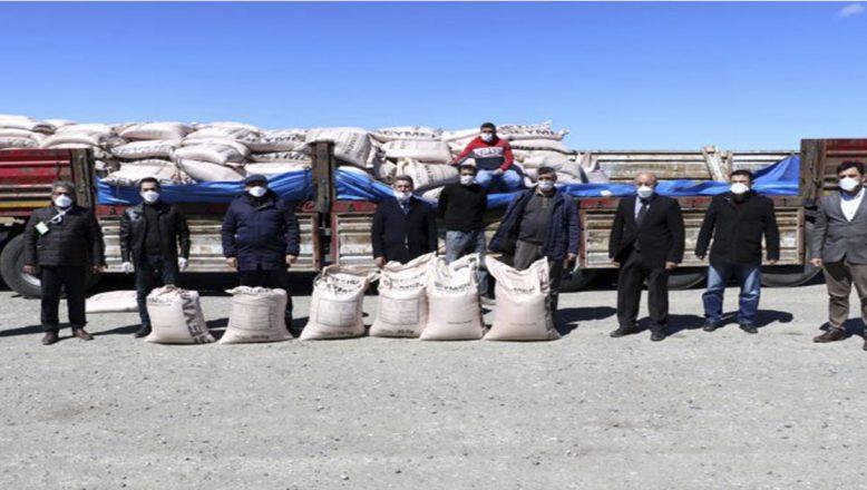 Ağrı'da çiftçilere hibe verilen arpa tohumu dağıtımına başladı