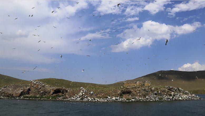 Türkiye'nin zirvesindeki Balık Gölü doğal yapısı korunarak turizme kazandırılacak