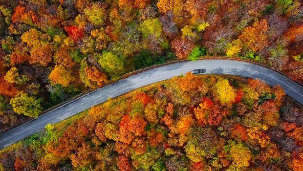 Sonbahar Taşlıçay'da Renk Cümbüşü Sunuyor
