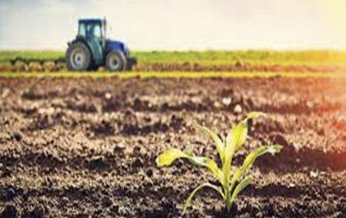 Tarım Kooperatif Borçları Yeniden Yapılandırılıyor