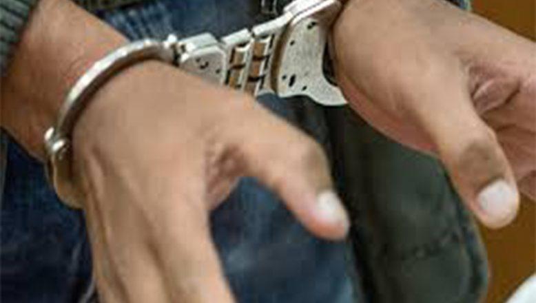 Ağrı'da Hırsızlık Çetesi Çökertildi