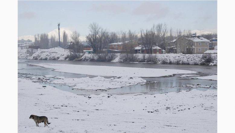 Ağrı'da dondurucu soğuklar yaşamı olumsuz etkilemeye devam ediyor