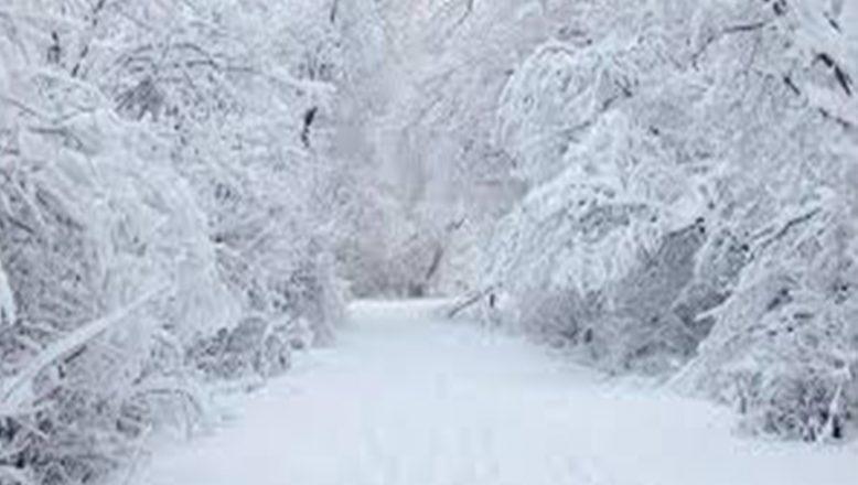 Ağrı ve çevresinde kar yağışı etkili olacak
