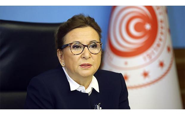 Bakan Pekcan:Ciro kaybı desteği ödemeleri için başvuru süreci bugün başladı
