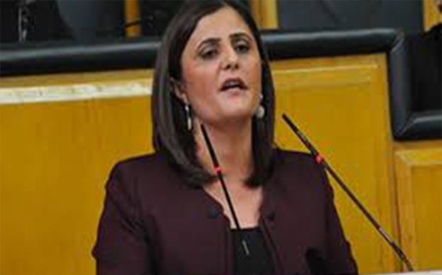 HDP Ağrı milletvekili Dirayet Dilan Taşdemir hakkında soruşturma açıldı