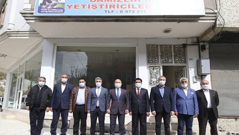 Ağrı Valisi Dr. Osman Varol, Ağrı İl Damızlık Sığır Yetiştiriciliği Birliğini Ziyaret Etti