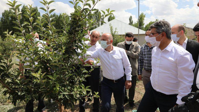 Vali Varol, Patnos'un Köylerinde Bulunan Meyve Bahçelerini Ziyaret Etti