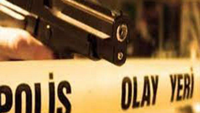 Ağrı'da Silahlar Ölüm Kustu