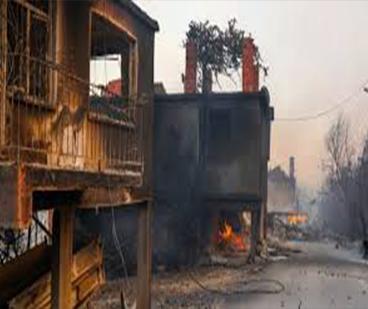 Orman yangınları 8. günde 5 ilimizde devam ediyor